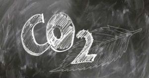 Biodiesel Making Big Impact on CO2 Emissions